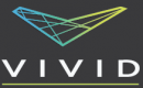 VIVID CONSULTING GROUP